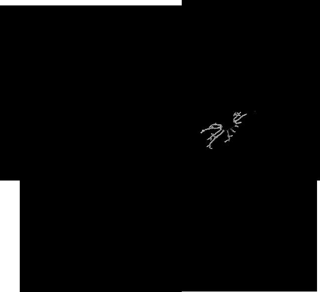 Hasenmühle